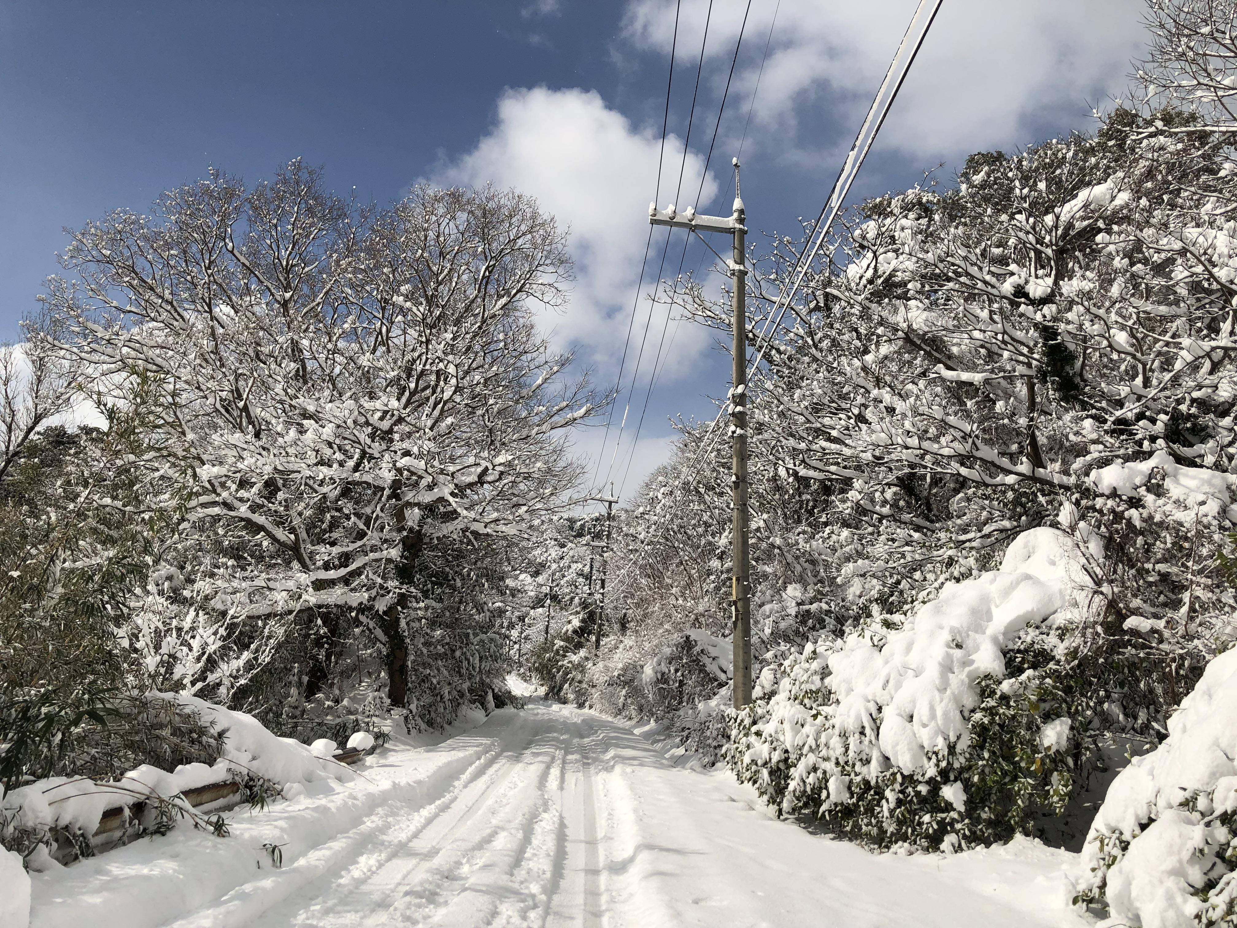 何十年ぶりの大雪 職員総出で地域の雪かきしました
